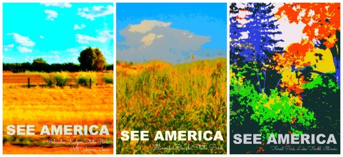 see america collage 1